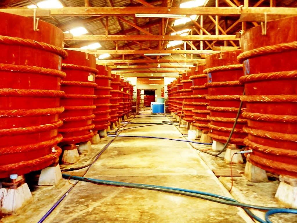 Fish Sauce Factory at Phu Quoc, Vietnam